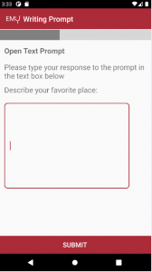 text_prompt